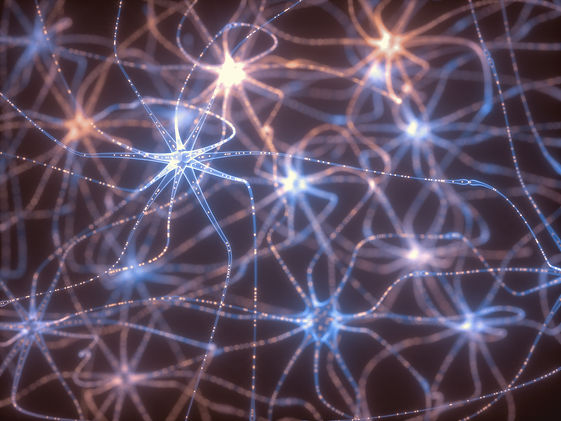 neurons-electrical-pulses-P4VZFBS.jpg
