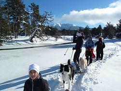 ENGAGEMENT FAMILLES hiver