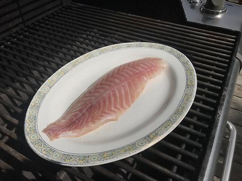 Redfish ($17.00/lb)