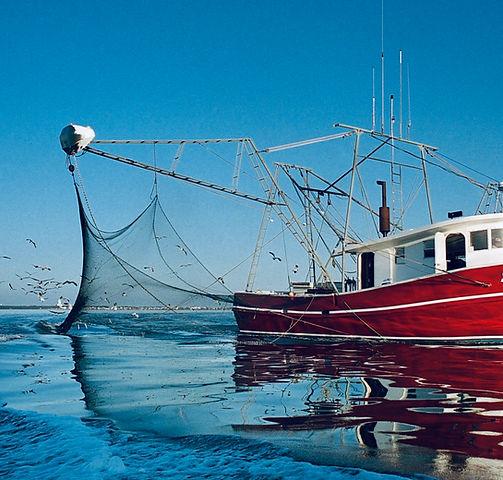 Shrimp Boat 2.JPG