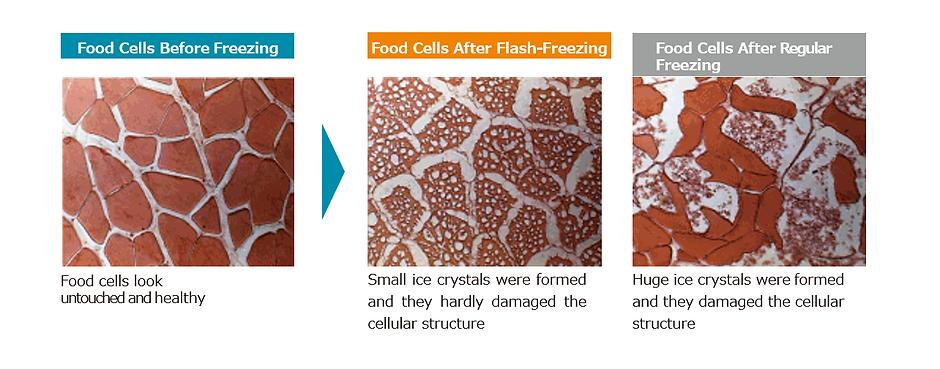 frozen cells.png
