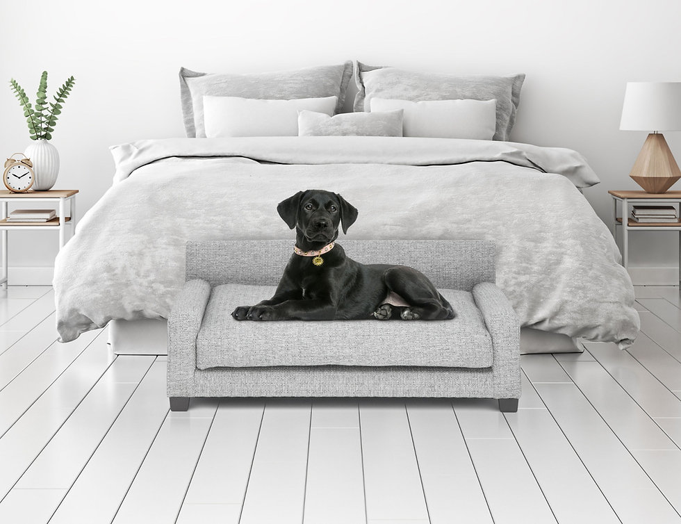 Metro Bed by Club Nine Pets