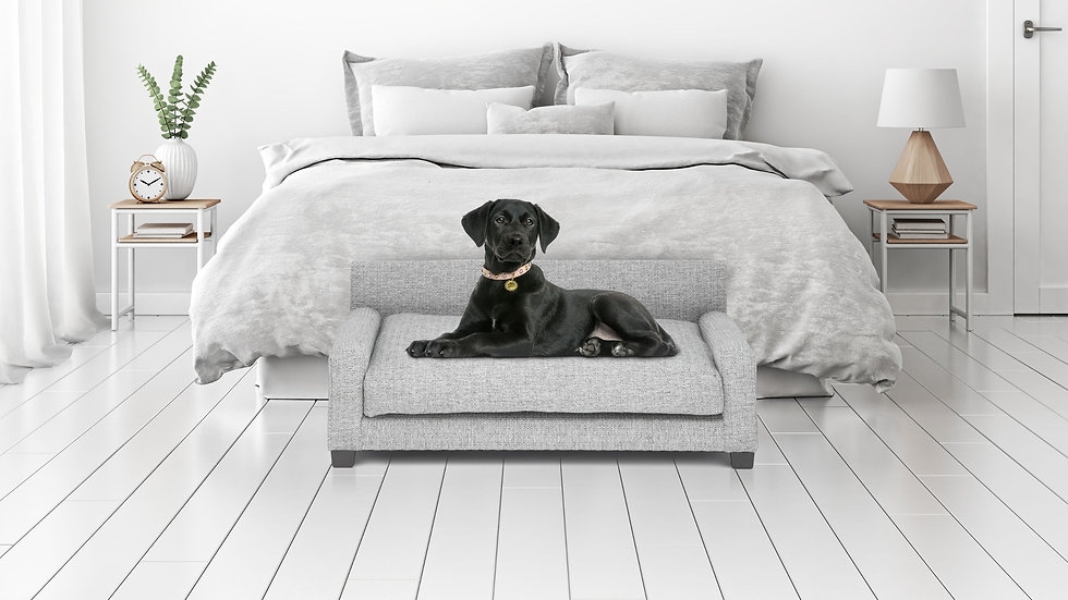 Metro Dog Bed Club Nine Pets