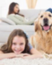 Club Nine Pets Luxury Dog Beds