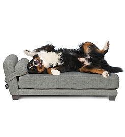 TRUE Orthopedic dog bed