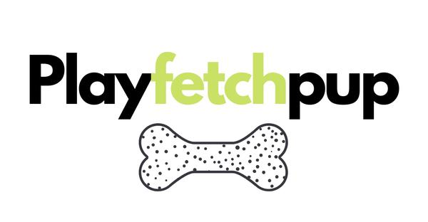 play fetch pup