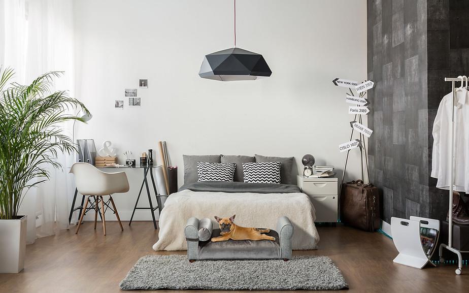 Luxury dog bed modern club nine pets