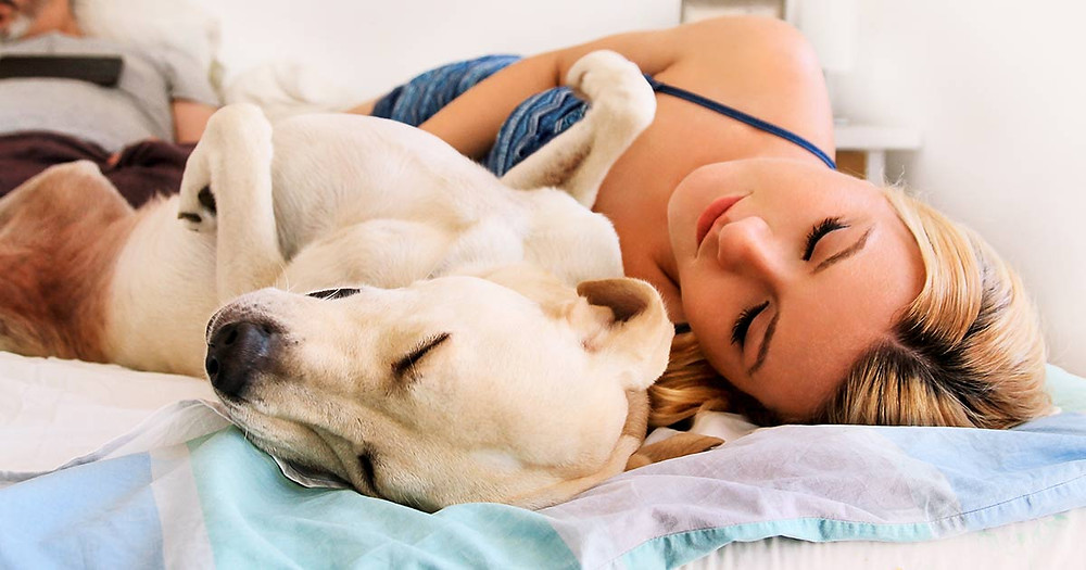 Lady and dog sleeping on bed