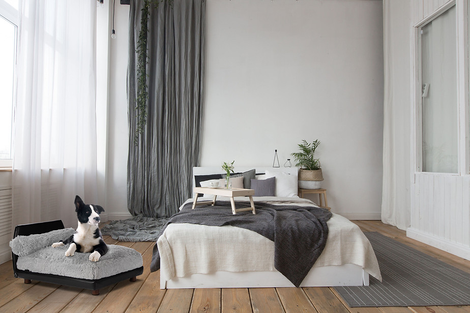 Club Nine Pets Luxury Pet Beds in USA