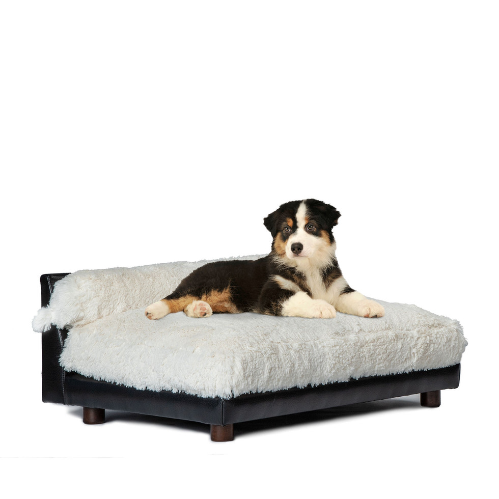 Soho Roma Orthopedic Dog Bed