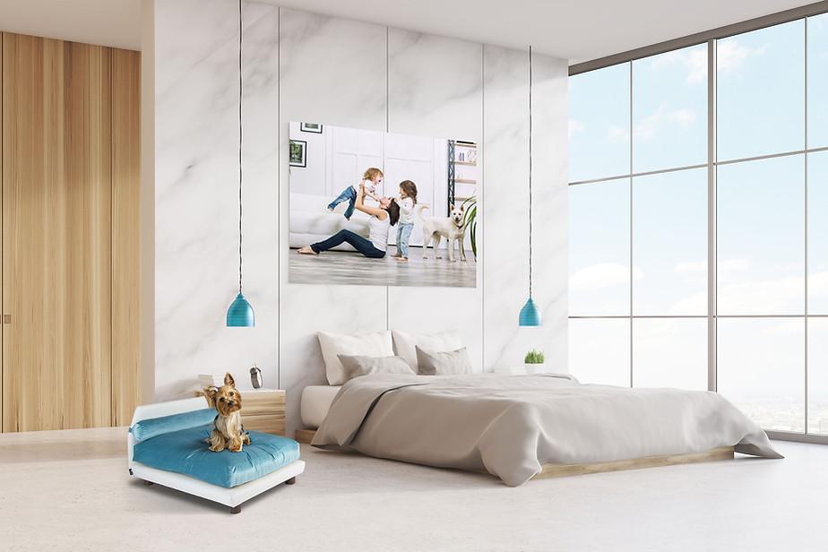Club Nine Pets Modern Pet Beds