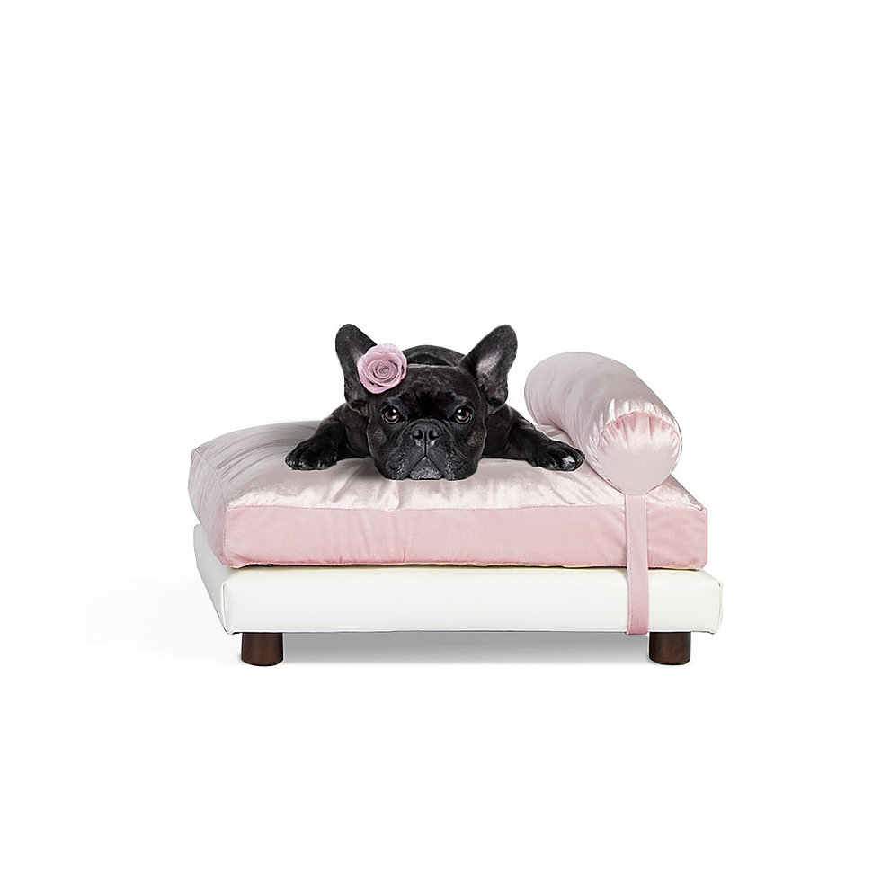 Soho Pink Velvet with French Bulldog Clu