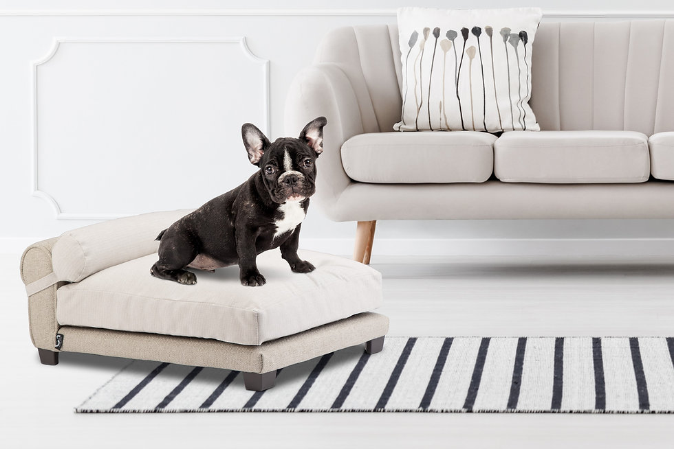 Belmont Dog Bed by Club Nine Pets