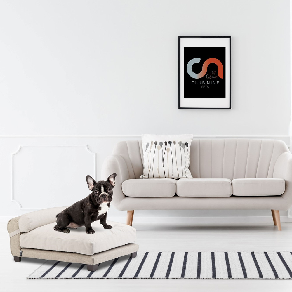 Dog bed lifestyle by Club Nine