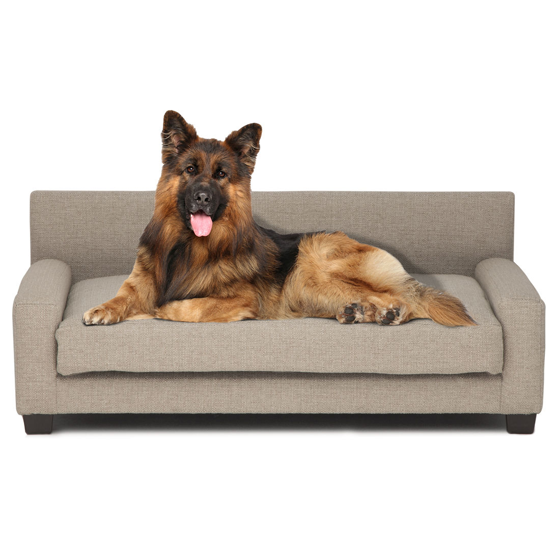 Metro Large Dog Bed in Oatmeal