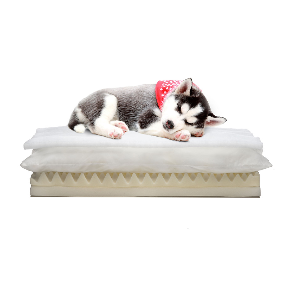 Our Exclusive Healopedic Comfort Orthopedic Beds Are Engineered for Ultimate Comfort and Support