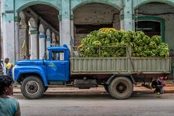 1_mirco_taliercio__Puerco_Asado_Cuba