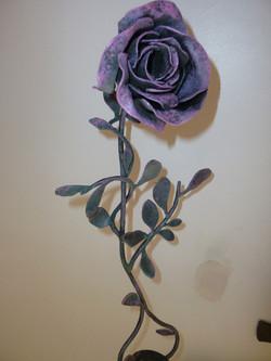 rose sur tige