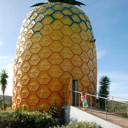 The world's biggest pineapple, standing 16.5 m high with 3 stories. There's a gift shop full of pineapple goodies, locally made pottery and puzzles as well as t-shirts and hats. On the 3rd floor there's an observation deck which offers magnificent 360°views over the surrounding farm lands to the Indian Ocean.