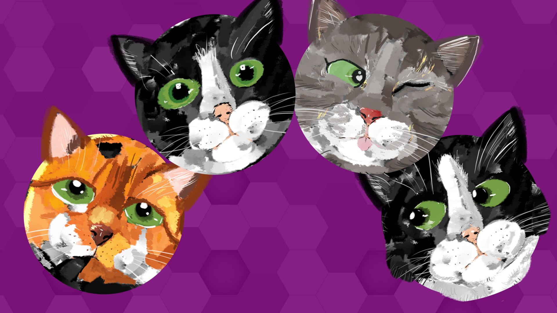 les chats.png