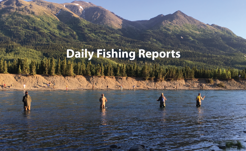 Daily-Fishing-Reports-Photo_edited.png