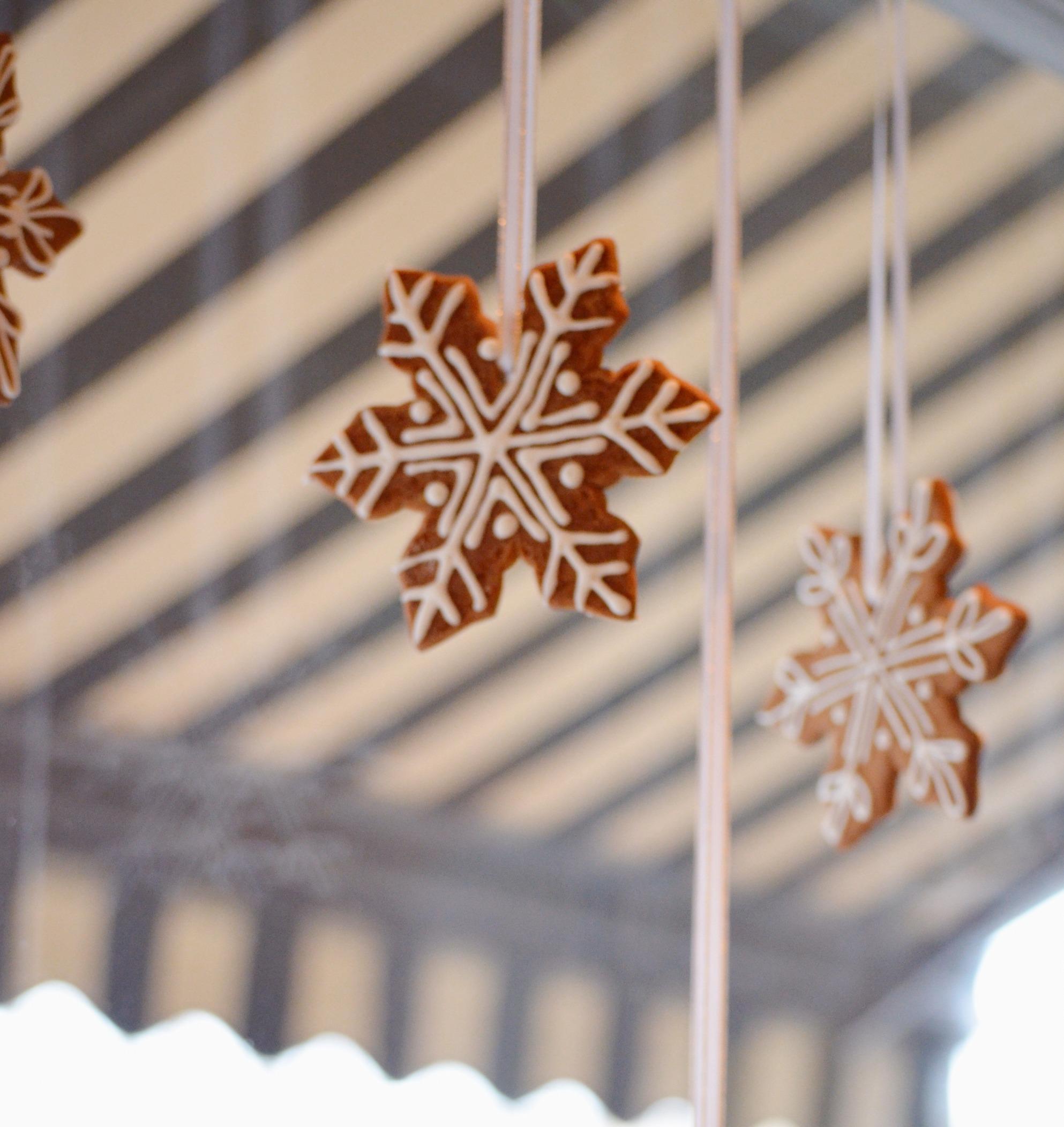 hanging snowflakes_edited