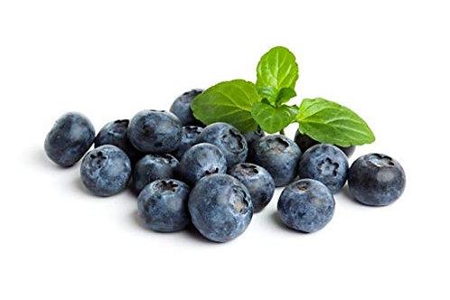 Blueberry (6oz)