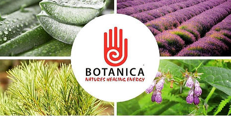banner-with-herbs-1.jpg