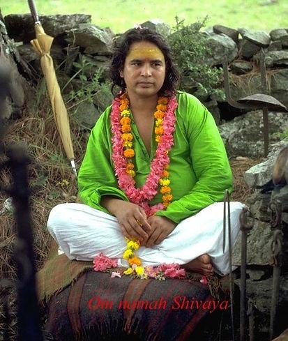 Yoga il Loto Blu - Shri Babaji