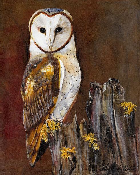 Barn owl 5x7.jpg