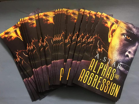 Booklet Design for author A. Star