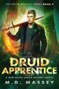 Druid-Apprentice-triquetra.jpg