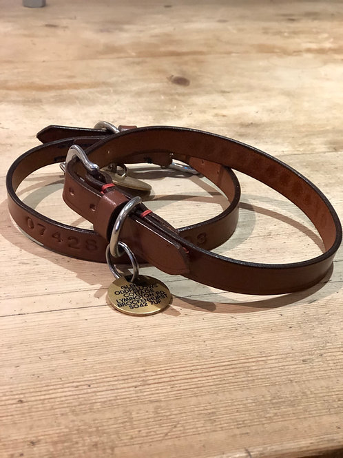 Make your own dog collar or lead workshop course