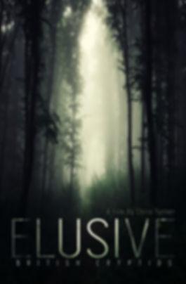 Elusive new cover art.jpg