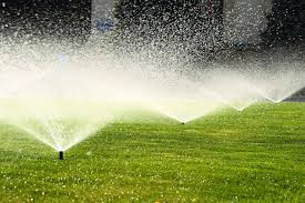 Lawn care tips for the upcoming summer!