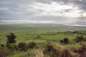 Across Ngorongoro Crater