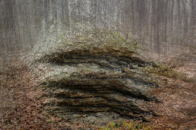 An Erratic On The Flats North of Hubbard Hill