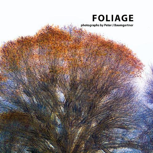 Foliage photobook and an original print.