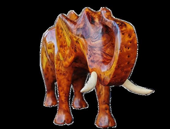 Stunning Elephant Sculpture Thuya Burl