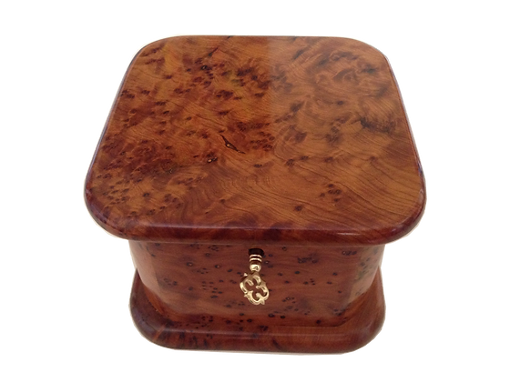 T21- Square Burl Thuga Stylish Box 12 12x12cm
