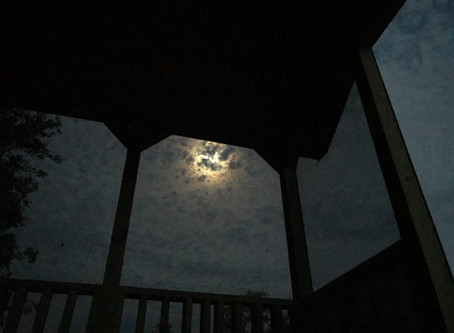 Laying here on the porch of the new cabin watching the moon and trying to figure out which tree the