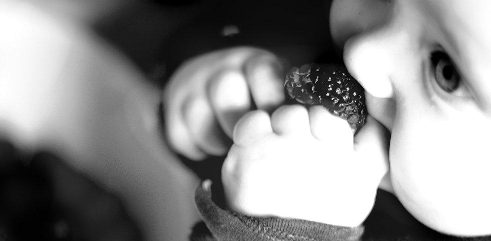 BLW, Beikostberatung, Breifrei, Brei, Fingerfood, Babycoach, Baby Ernährungsberatung, Bekosteinführung, Sachsenheim, Bietigheim, Kreis Ludwigsburg