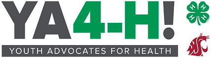 YA4-H-logo-Final-3color-990x271.jpg