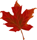 leaf-984998_1280.png