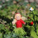 Erdbeere (hängend)