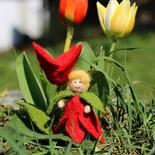 Tulpe (stehend)