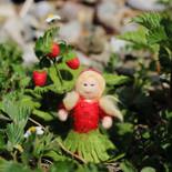 Erdbeere (stehend)