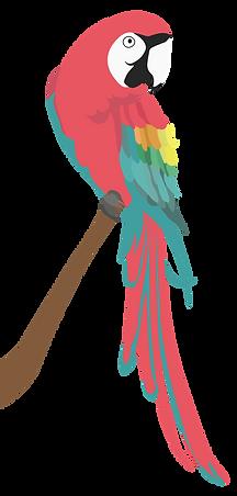 papagaai%20transp_Tekengebied%201_edited