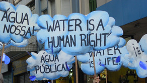 Water Policty Part III: Water Privatization: Risks And Benefits