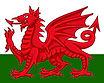 Magician Wales - DRAGON